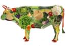 ¿Quieres optar por una dieta vegana? ¡Sigue estos pasos!